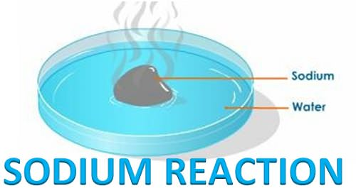 SODIUM METAL REACT WITH WATER