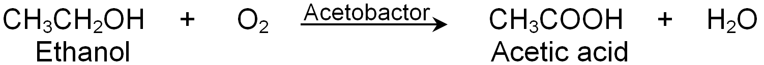 Preparation Of Acetic Acid Using Ethanol and Acetobactor