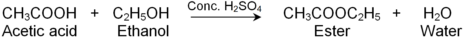 Esters is prepared by reacting acetic acid with ethanol in the presence of sulphuric acid