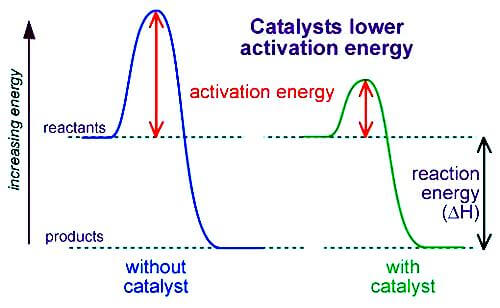 For a reaction to take place, the molecules must have a certain energy called activation energy. If the activation energy is higher, then the reaction will be slow. A catalyst works by lowering the activation energy of the chemical reaction
