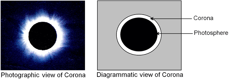 Different Views Of Corona